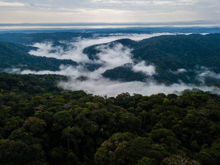 Dieser Teil Kolumbiens zählt zu den artenreichsten Regionen der Welt. Die Einheimischen hoffen, dass seine Naturschätze ...