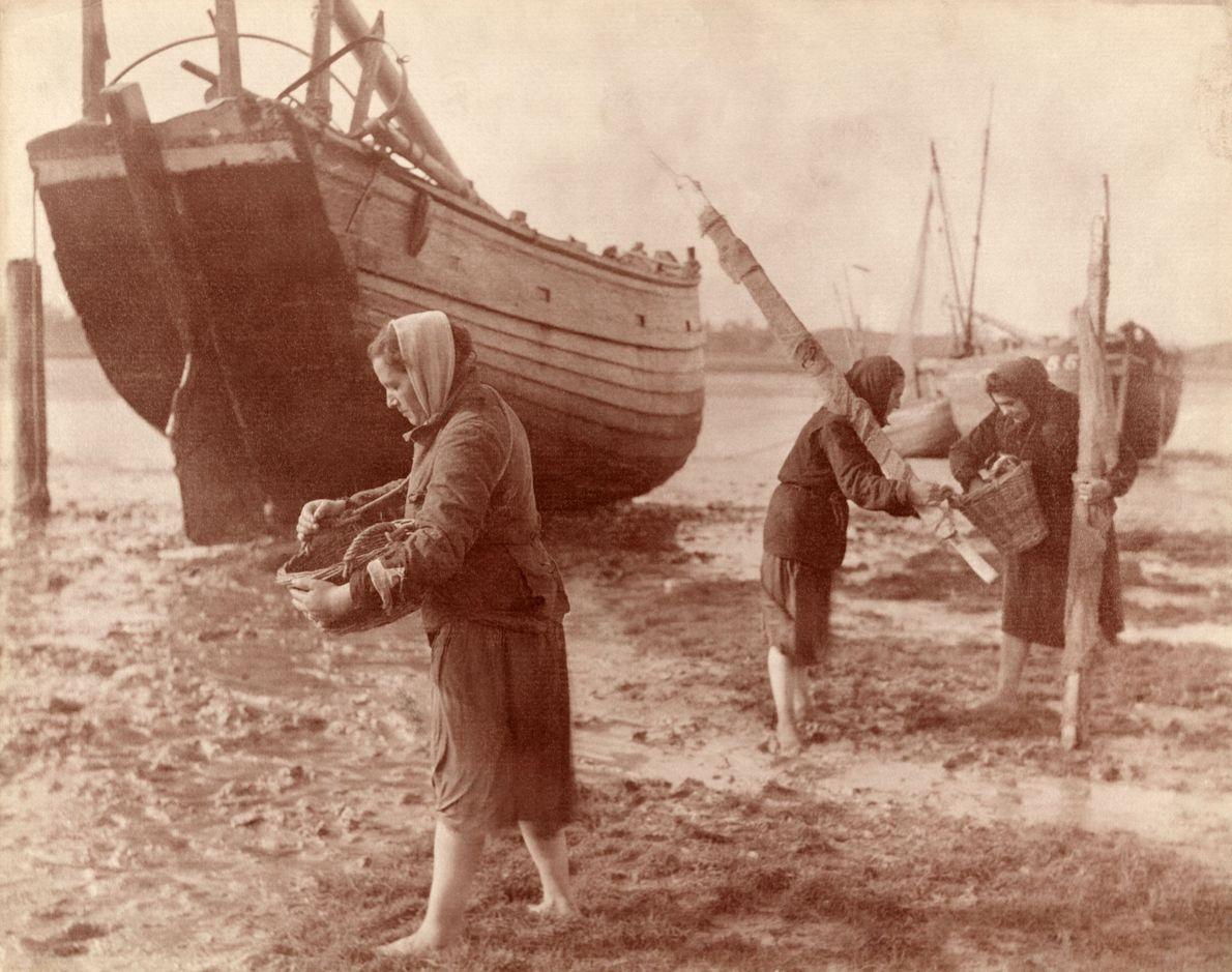 Frauen sammeln Austern