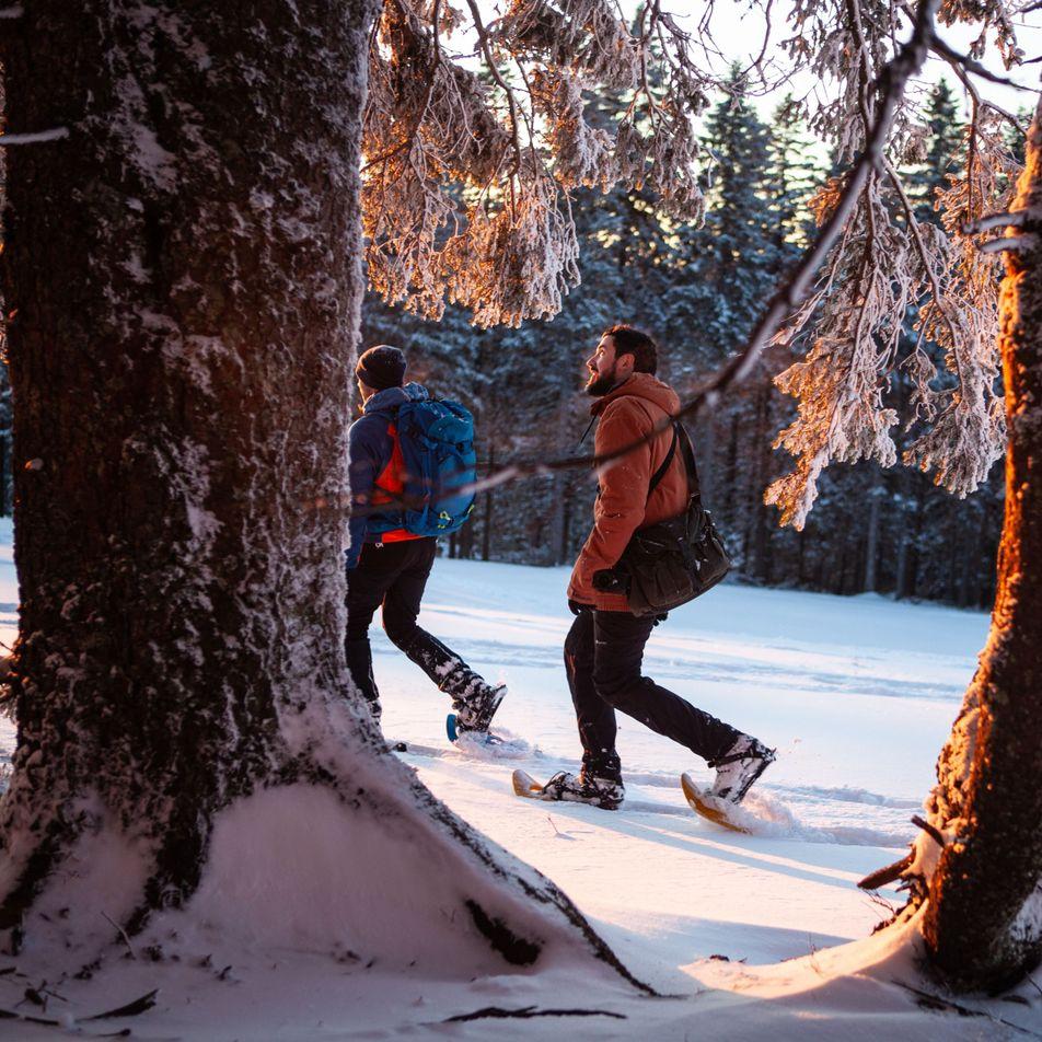 Eine Winterreise in Slowenien