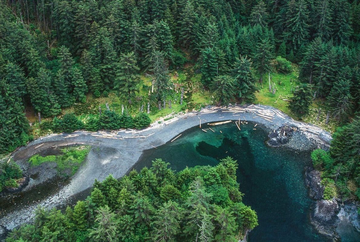 Blick auf SG̱ang Gwaay Llanagaay, besser bekannt unter seinem englischen Namen Ninstints. Das ehemalige Haida-Dorf im ...