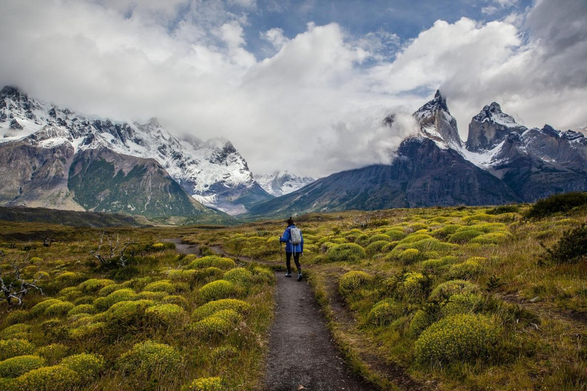 Torres-del-Paine-Nationalpark in Patagonien, Chile