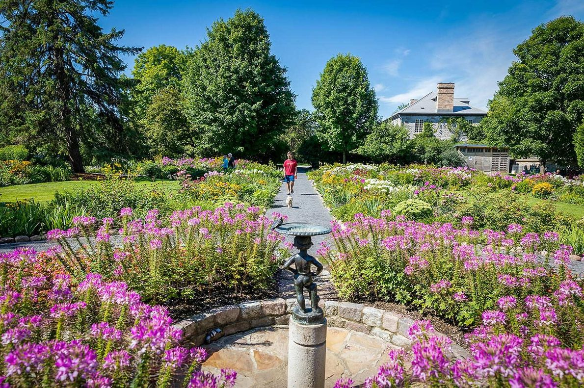 Ein Spaziergang durch die wunderschönen Blumenbeete von Maplelawn in Ottawa ist eine kleine Zeitreise in einen ...