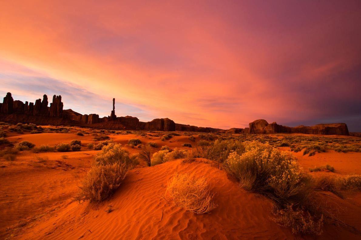 Rollbüsche und Sanddünen im Monuments Valley Navajo Tribal Park