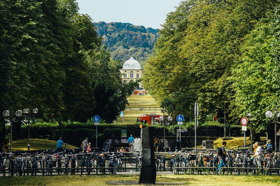 Poppelsdorfer Allee: Rund einen Kilometer lang ist die von Kastanien bestandene Prachtstraße. Sie verbindet die kurfürstliche …