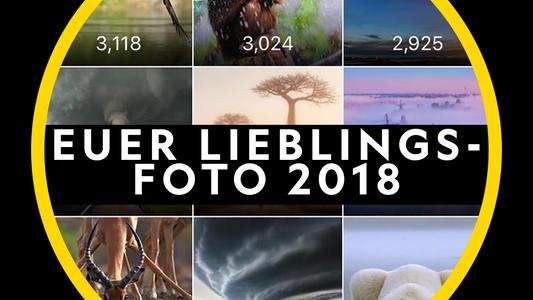 Die beliebtesten Instagram-Bilder aus 2018