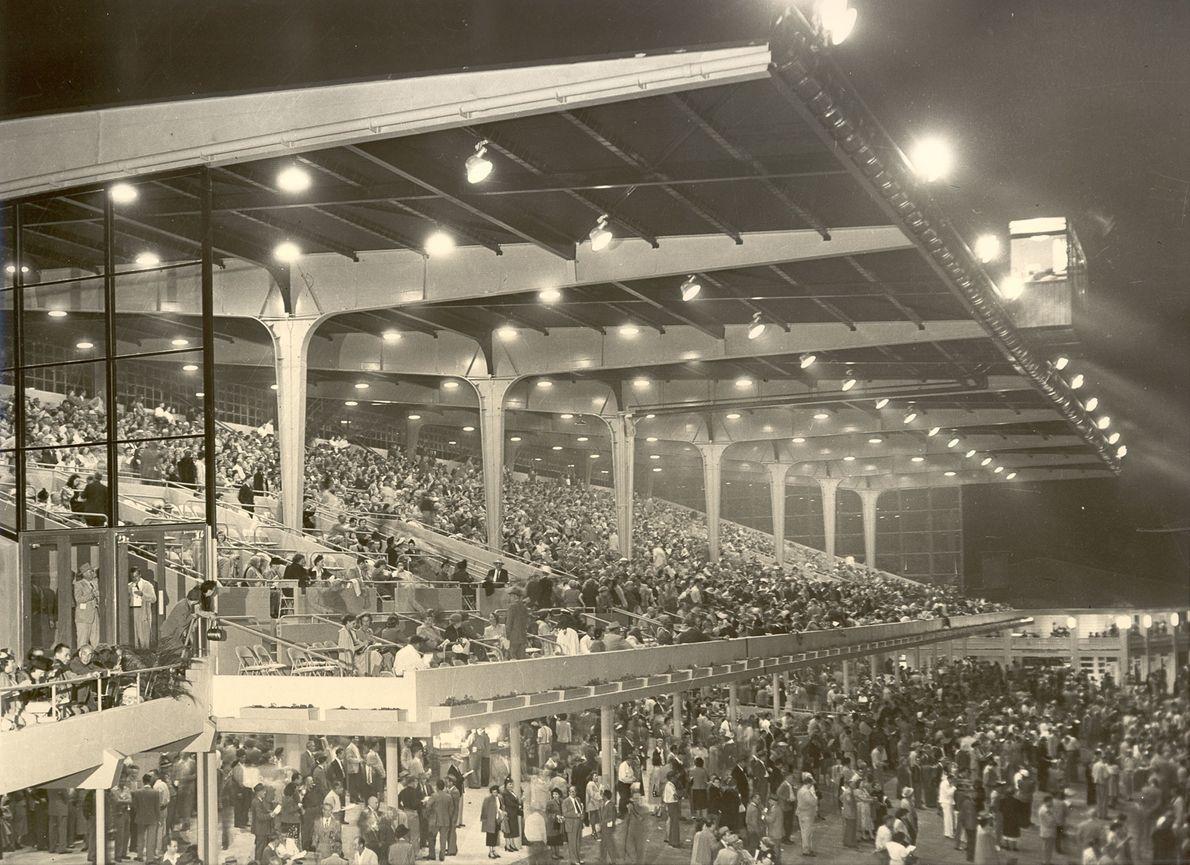 1950 versammelten sich Tausende von Fans in der Derby Lane, um die Rennen von den Tribünen ...