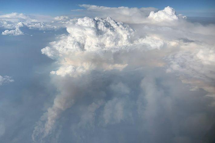 Am 8. August 2019 machte das Forschungsflugzeug DC-8 der NASA diese seltene Aufnahme einer aufsteigenden PyroCb-Wolke ...