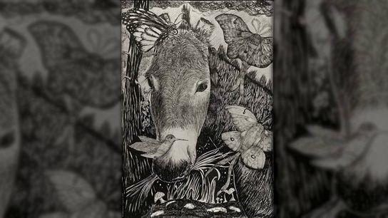 Arati Kumar-Rao, einer von Salopeks Reisegefährten, malte diese Skizze von Raju. Der zähe kleine Packesel begleitete ...