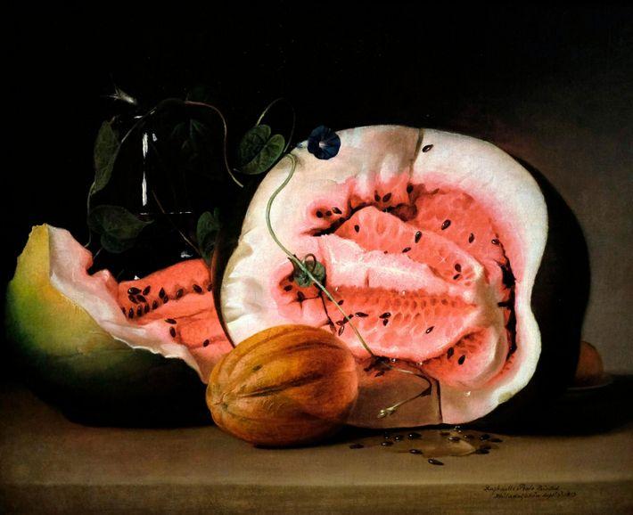 Aufgrund von selektiver Züchtung änderte sich die Farbe des Fruchtfleisches der Wassermelone langsam.