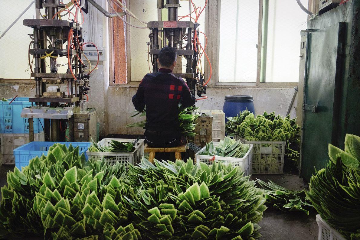 Fabrikarbeiter und künstliche Pflanzen