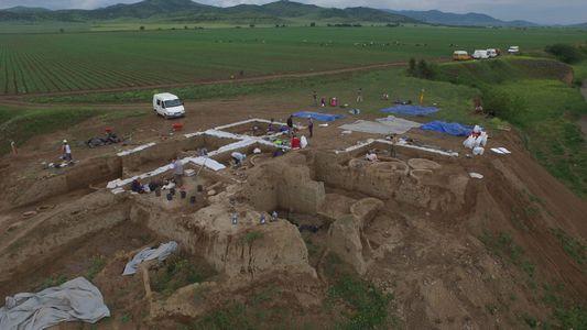 Galerie: Ältestes Weinbaugebiet bei 8.000 Jahre alter Siedlung entdeckt