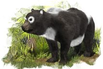 panda relative new extinct species