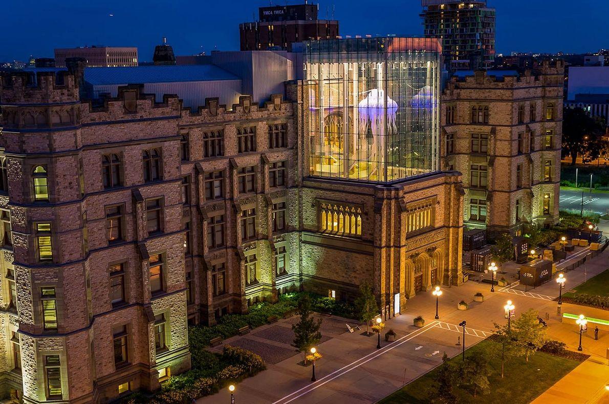 Der gläserne Ausstellungsraum Queen's Lantern des Canadian Museum of Nature beherbergt eine riesige aufblasbare Qualle.