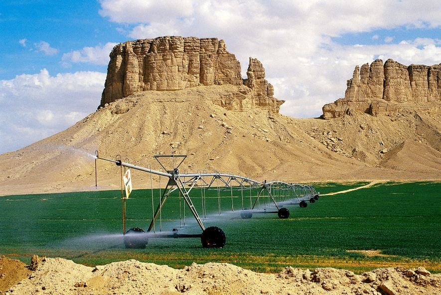 Wasser, Nahrung, Energie – Die Wüsten werden grün