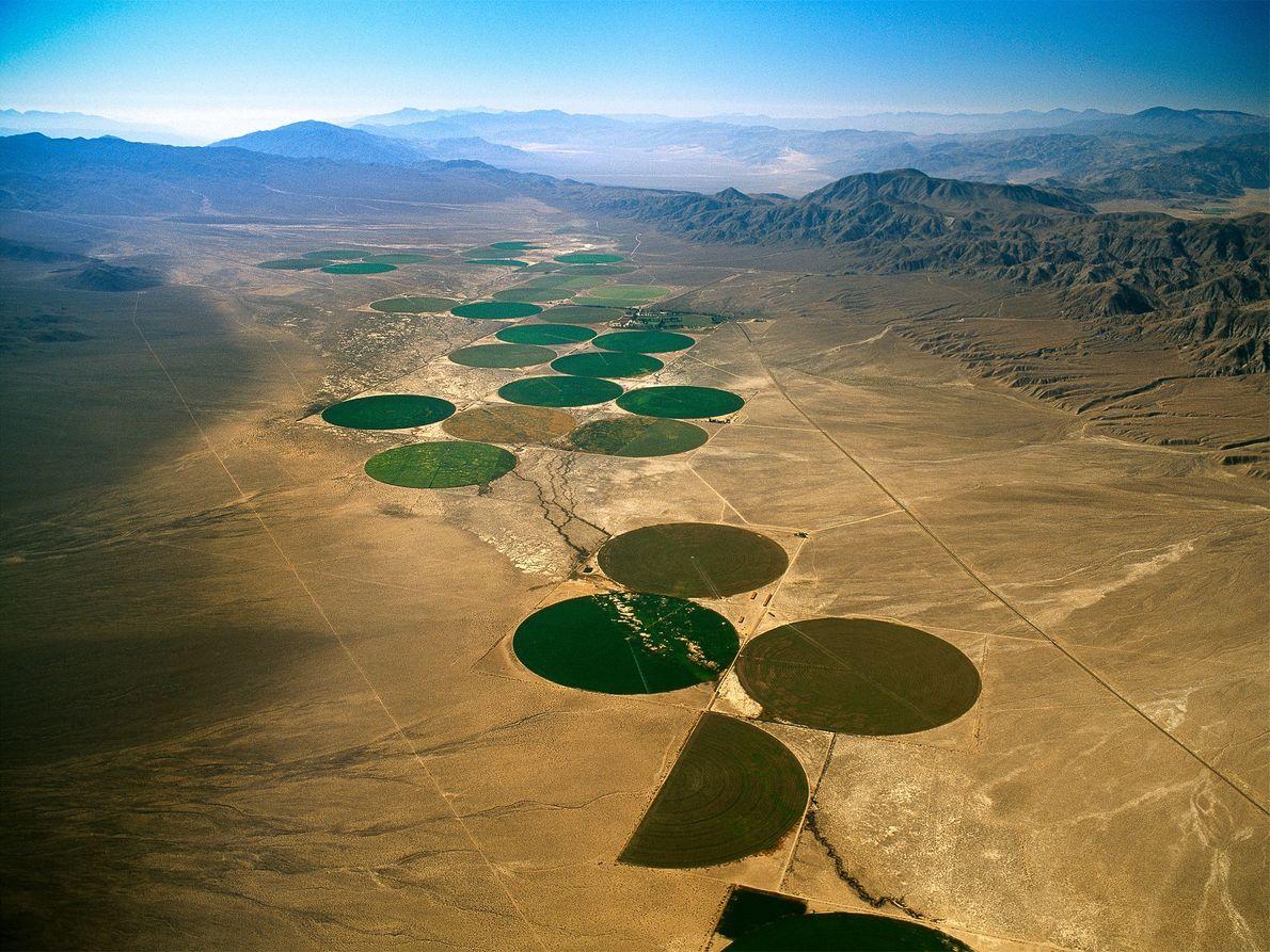 Getreidekreise, Nevada, USA
