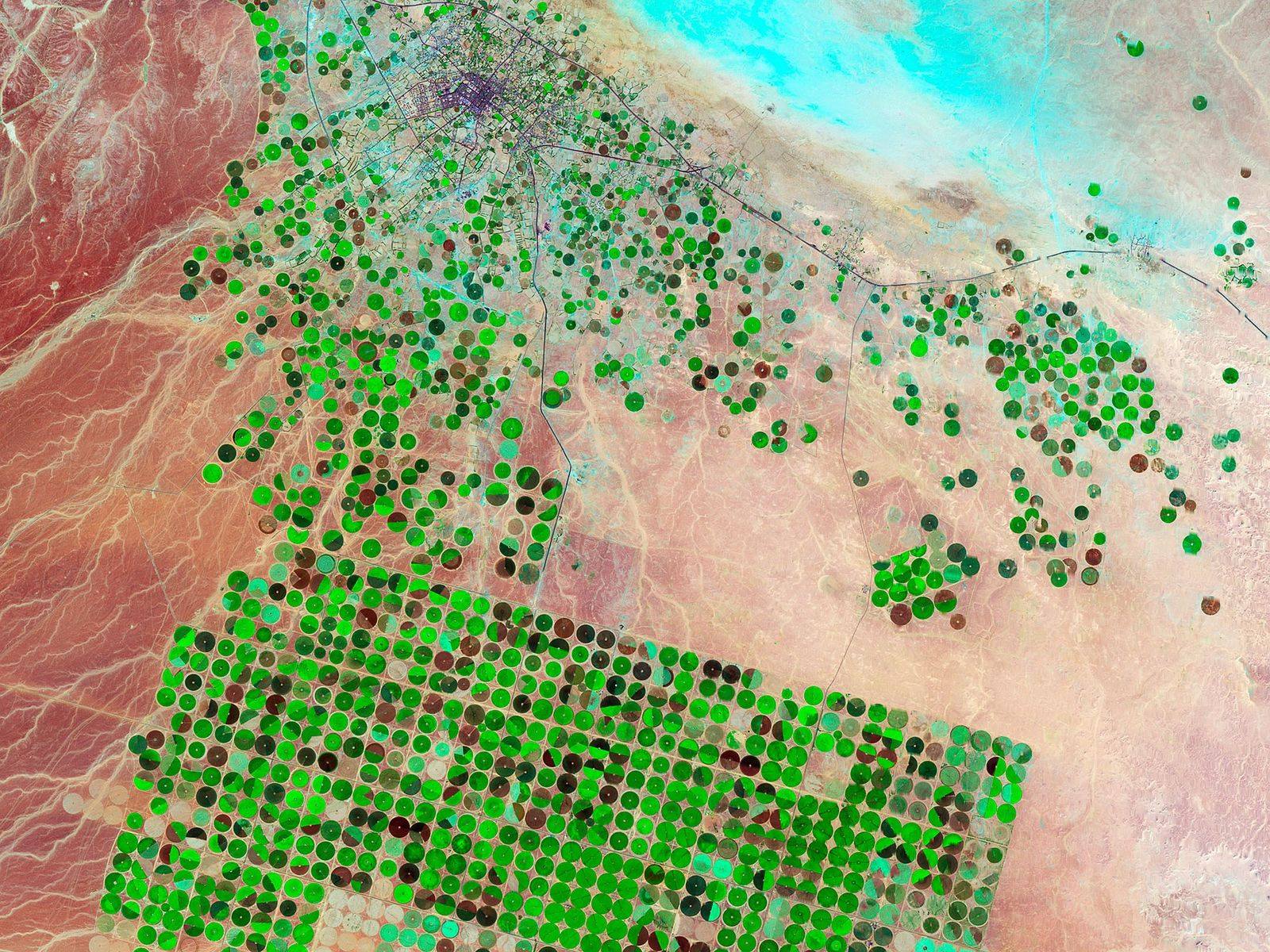 Bewässerte Getreidekreise, Saudi-Arabien