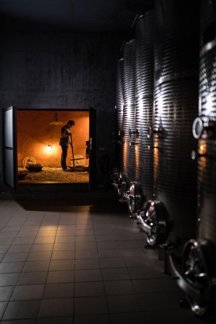 Der Winzer Andrej Erzetič rührt im Keller seiner Familie Wein um. Diese traditionelle Fermentationstechnik wird schon ...