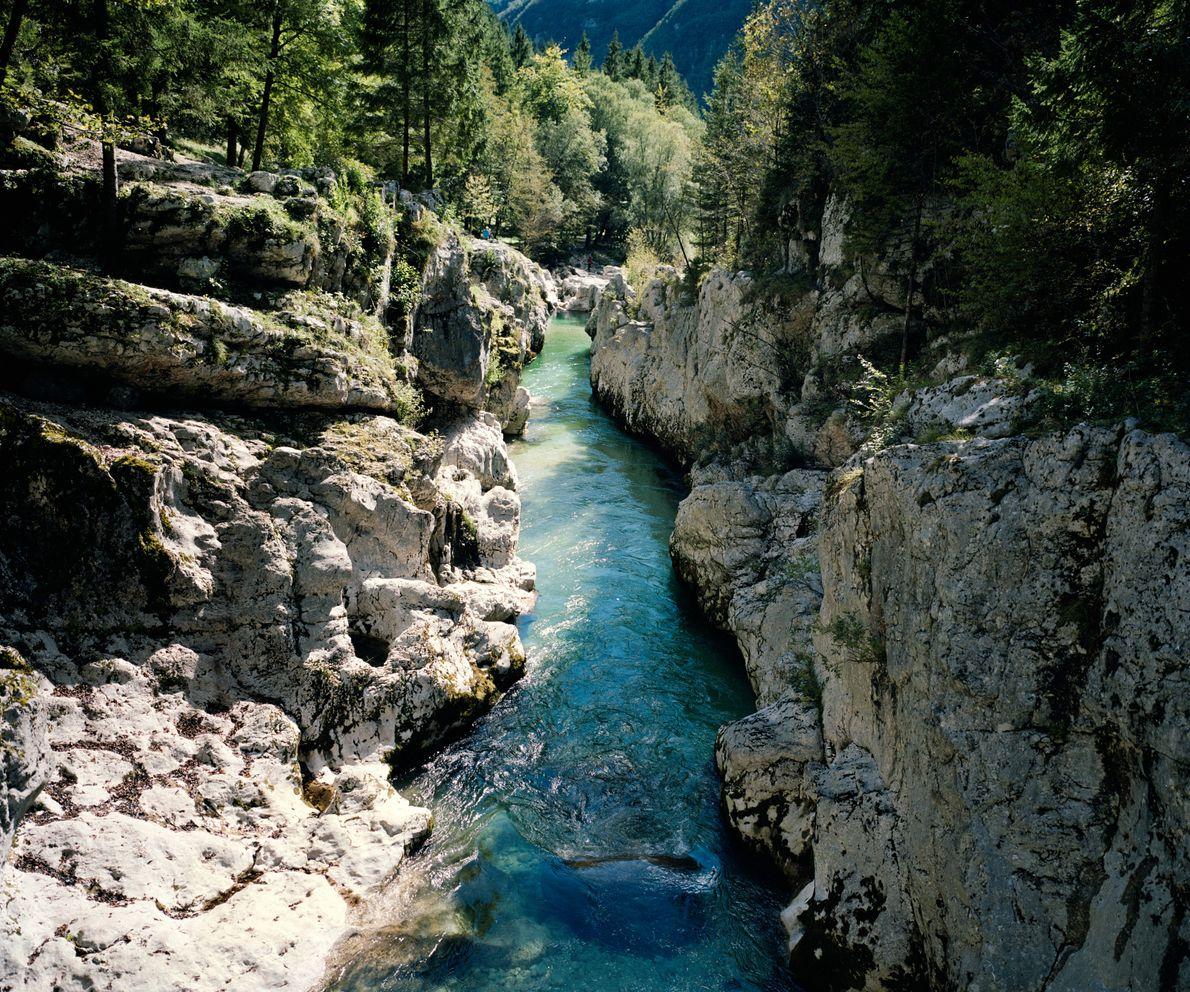 Die Soča fließt auf einem etwa 145 Kilometer langen Abschnitt durch das gleichnamige Tal, welches zu ...