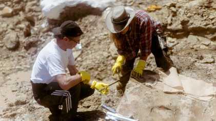 Galerie: Wie verschifft man ein Stück Dinosaurier-Friedhof?