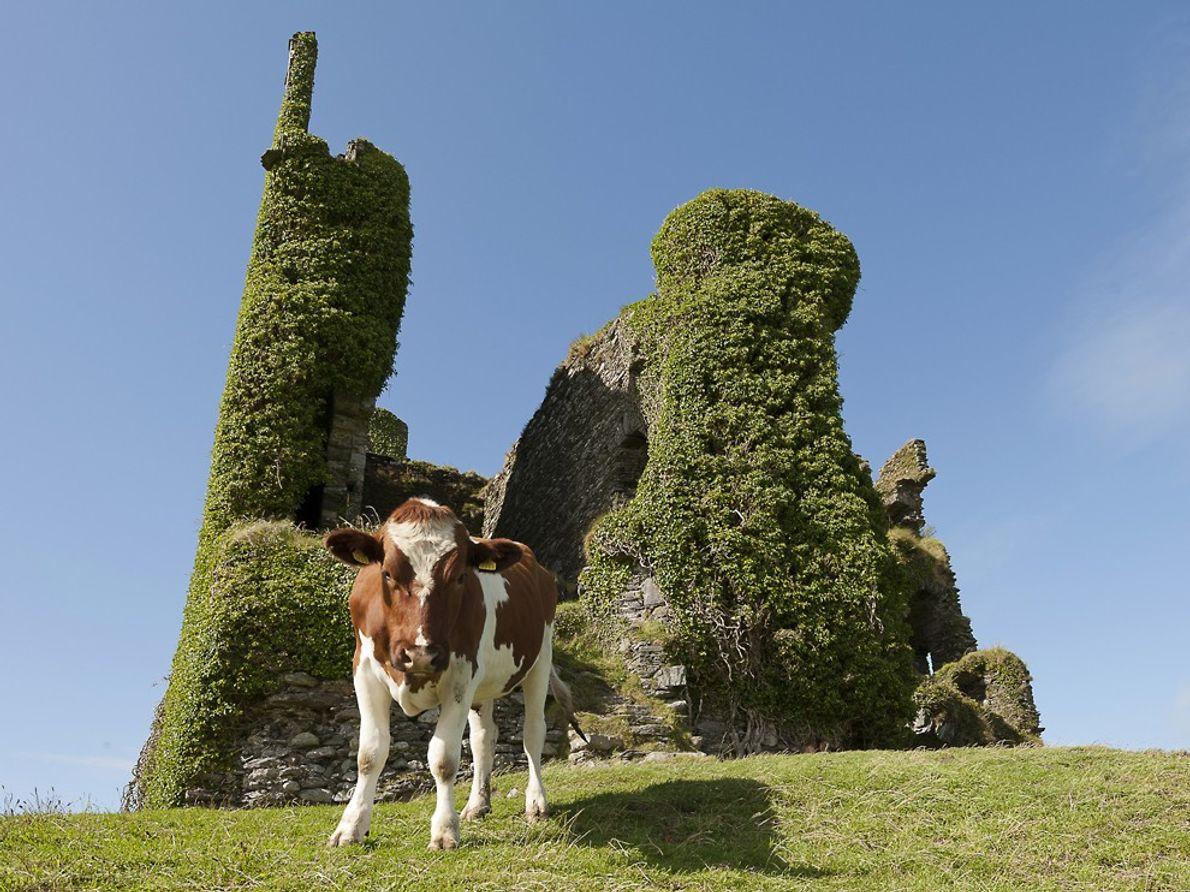 Ballycarbery Castle, County Kerry