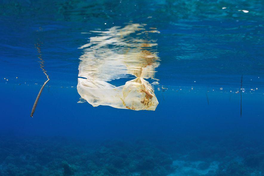 8 Millionen Tonnen Plastik landen jährlich im Meer