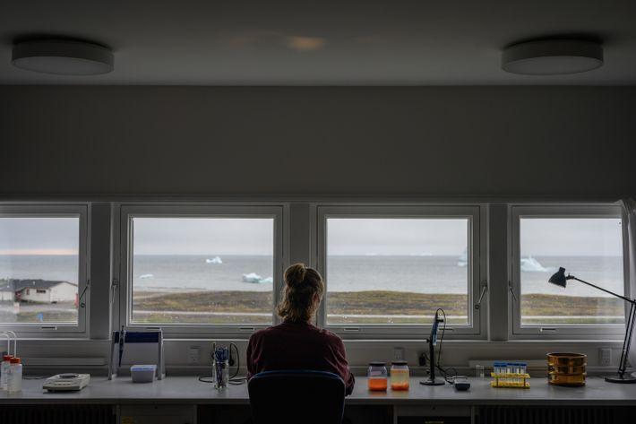 Martin Nielsen untersucht Zooplanktonproben im Labor der Arktisstation. Diese sind eine wichtige Nahrungsquelle, aber der Klimawandel ...