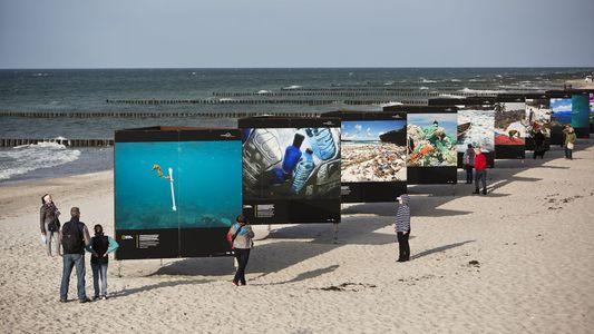 Plastik – großformatig am Strand