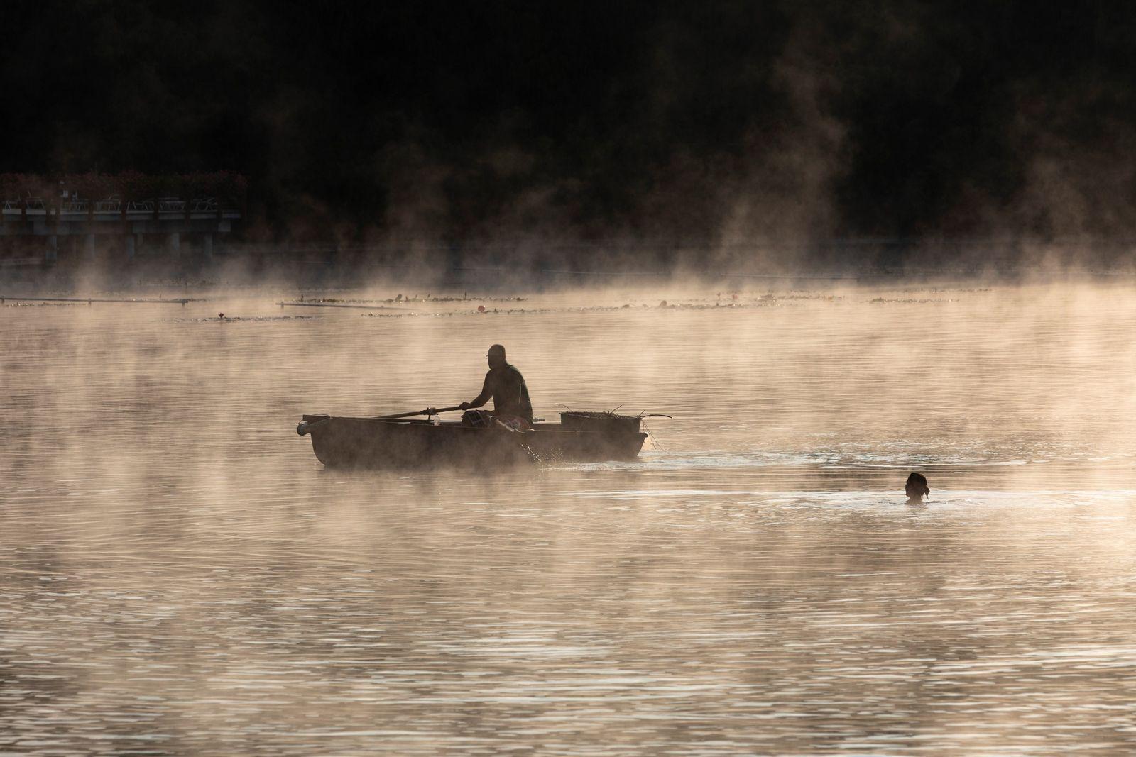 Im Morgengrauen begegnen sich ein Ruderer und ein Schwimmer auf dem Thermalsee Héviz. Dieser natürliche und ...