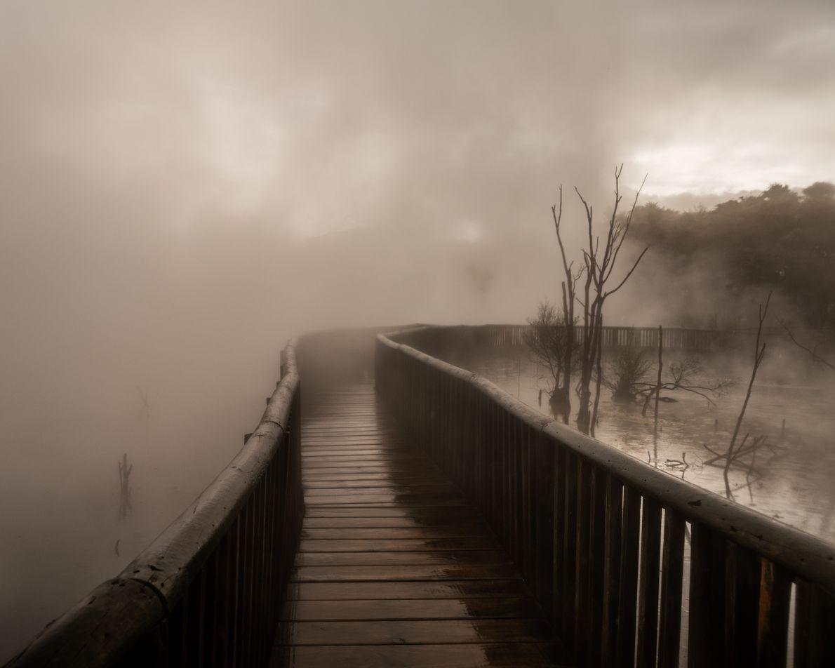 Rotorua eignet sich wunderbar, um mal ein bisschen Dampf abzulassen. Dieses geothermale Wunderland sprudelt sprichwörtlich über ...