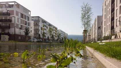 In der Heidelberger Bahnstadt wohnt die Zukunft