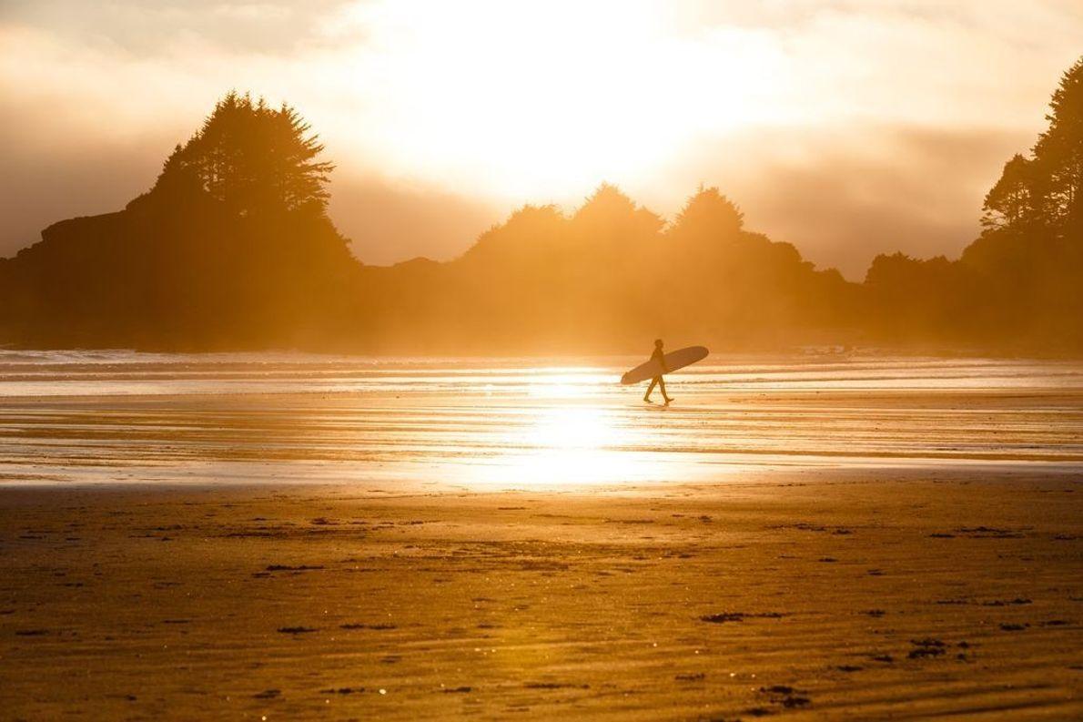 Bei Sonnenuntergang läuft ein einsamer Surfer über den goldenen Strand von Tofino auf Vancouver Island in ...
