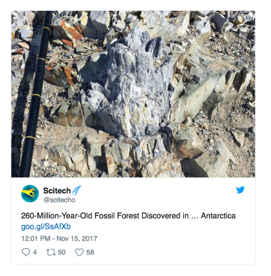 """""""260 Millionen Jahre altes Fossil entdeckt ... in der Antarktis"""", lautet ein Tweet vom Scitech-Account."""