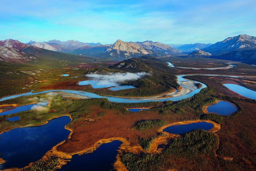 Das Tal des Alatna River in Alaska dient Wildtieren als Korridor: Auf diesem Weg ziehen sie in der wärmer werdenden Arktis weiter nach Norden. Vor allem die Zahl der Biber nimmt zu. Die von ihnen angelegten Teiche verschärfen das Abtauen des Permafrostes.