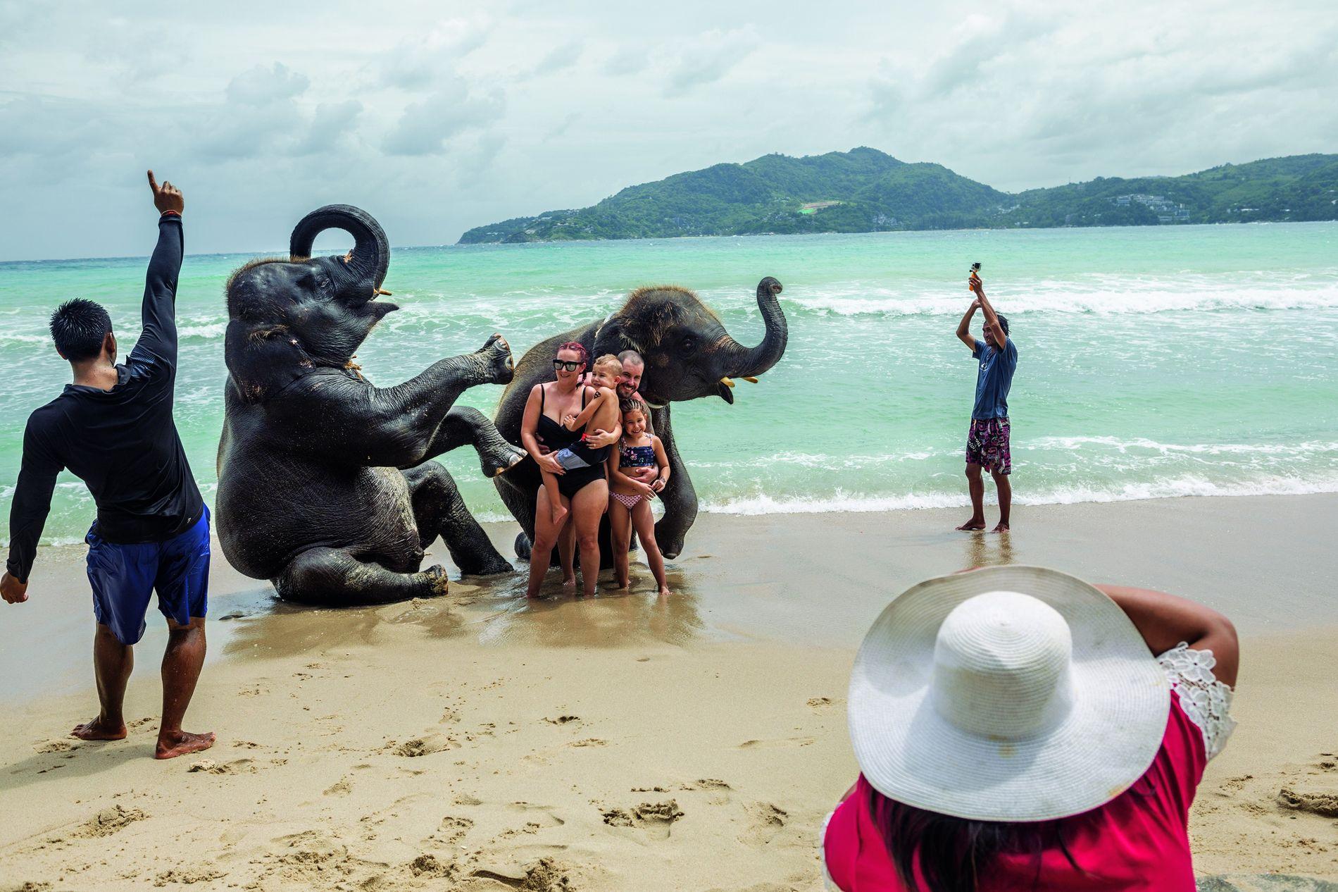 Am Lucky Beach auf der thailändischen Insel Phuket posiert eine Familie mit jungen Elefanten. Viele Touristen wissen nicht, wie sehr das Abrichten die Elefanten quält. Für sie zählt der idyllische Moment und die ganz besondere Erinnerung. In Thailand leben etwa 3800 Elefanten in Gefangenschaft. Über die Hälfte von ihnen arbeitet im Tourismus.