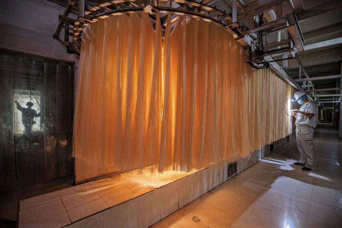 Nudeln in einer Fabrik in Zhengzhou