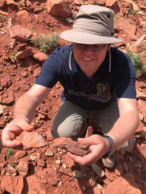 Glücksgriff: Dr. Rainer Schoch mit Teilen eines Saurierschädels bei einer Ausgrabung in Marokko.
