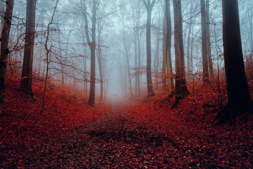 Wandern im Herbst: 28 Impressionen