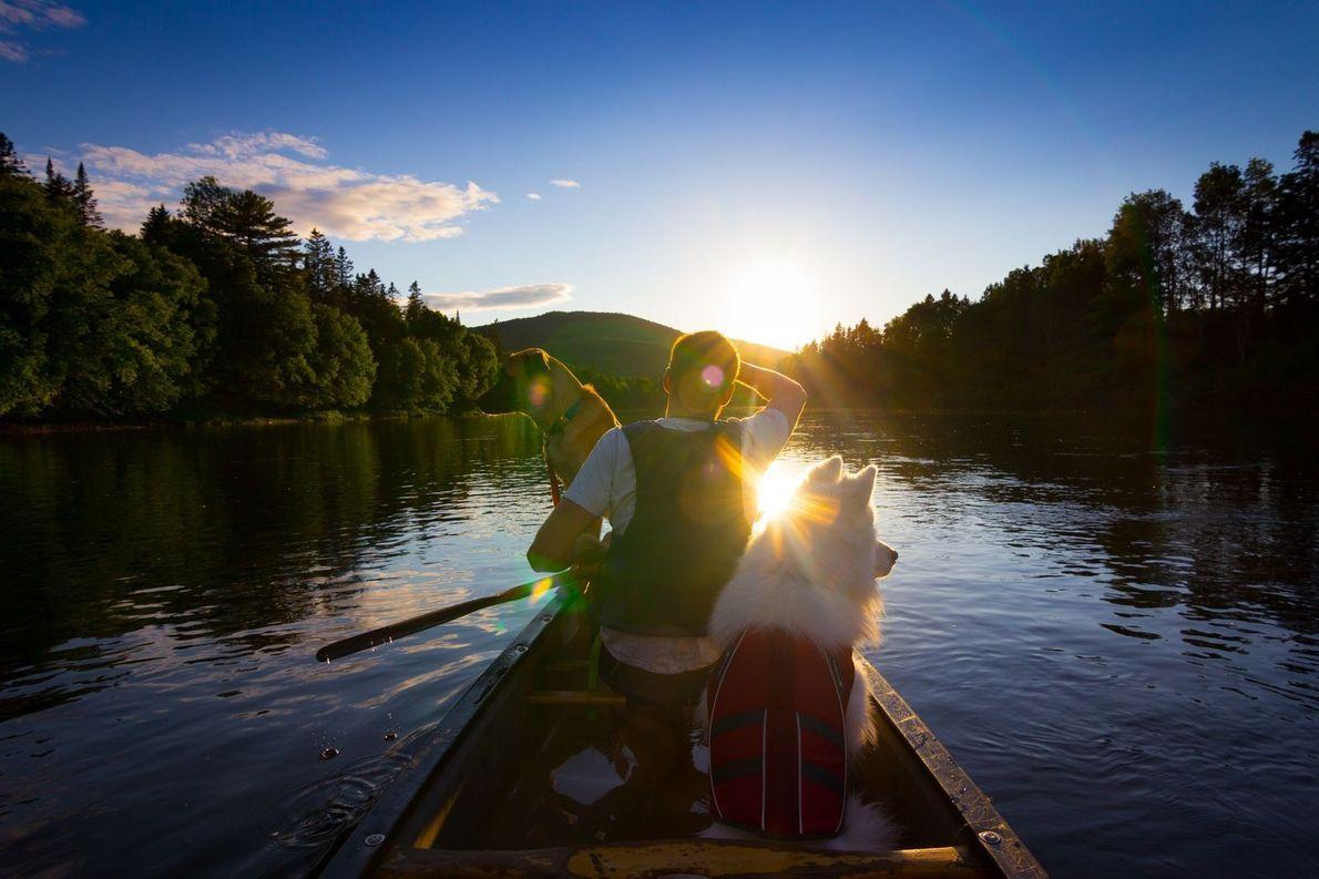 Hund und Herrchen auf Boot