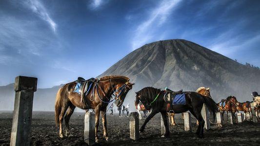 Galerie: Spektakuläre Abenteuer auf den Vulkaninseln Indonesiens