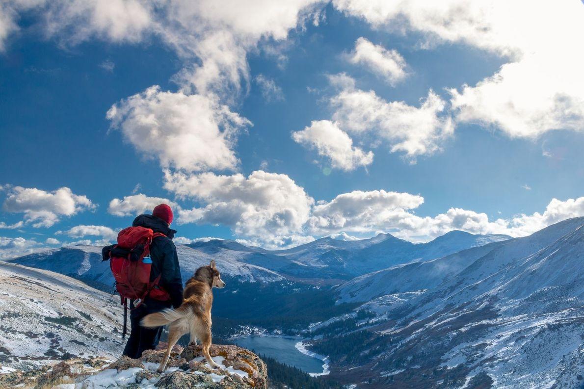 Hund und Herrchen auf Wanderung