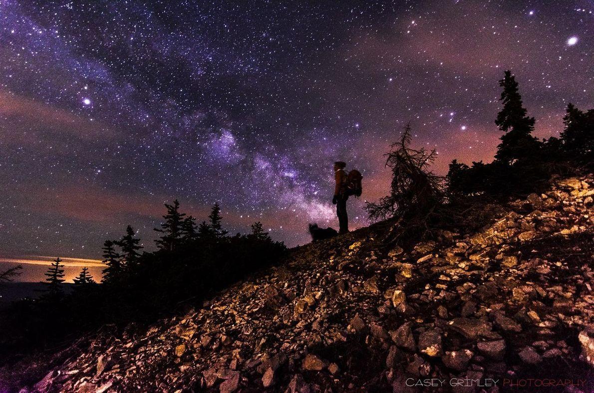 Hund und Herrchen bewundern Milchstraße
