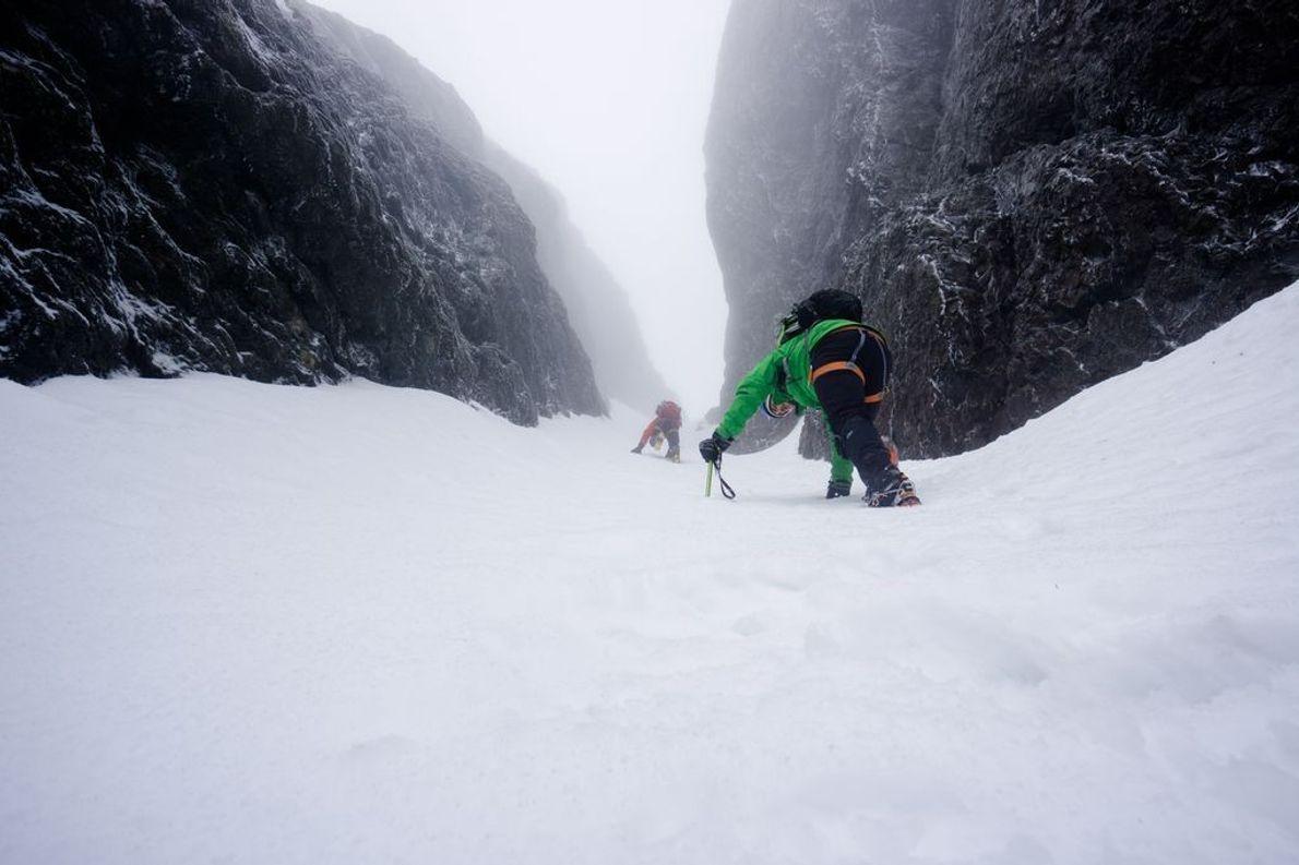 Weg zum Mount Arrowsmith