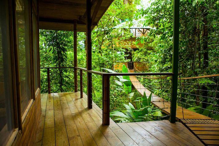 Finca Bellavista-Baumhaus-Community in Costa Rica