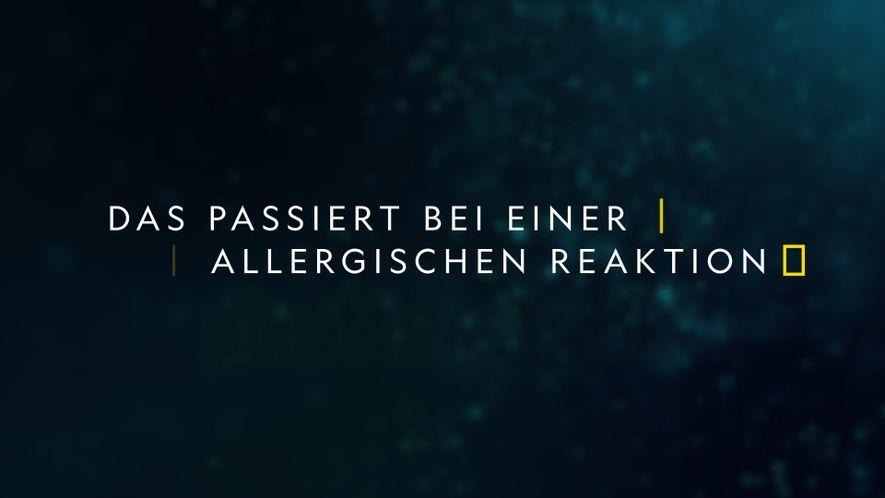 Eine kurze Geschichte der Allergien