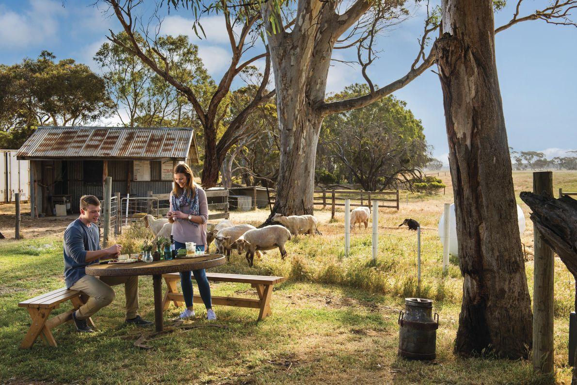 Entspanntes Inselleben auf Kangaroo Island