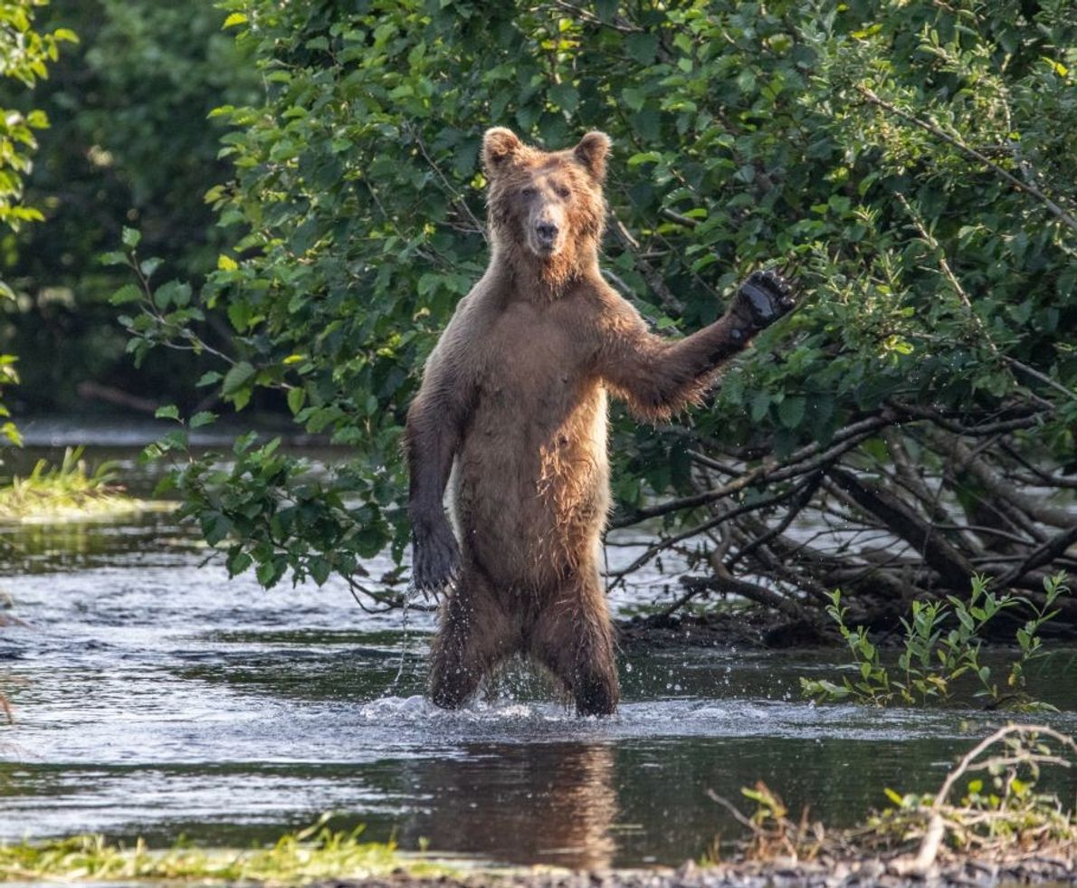 """Hi Y'all!"" 