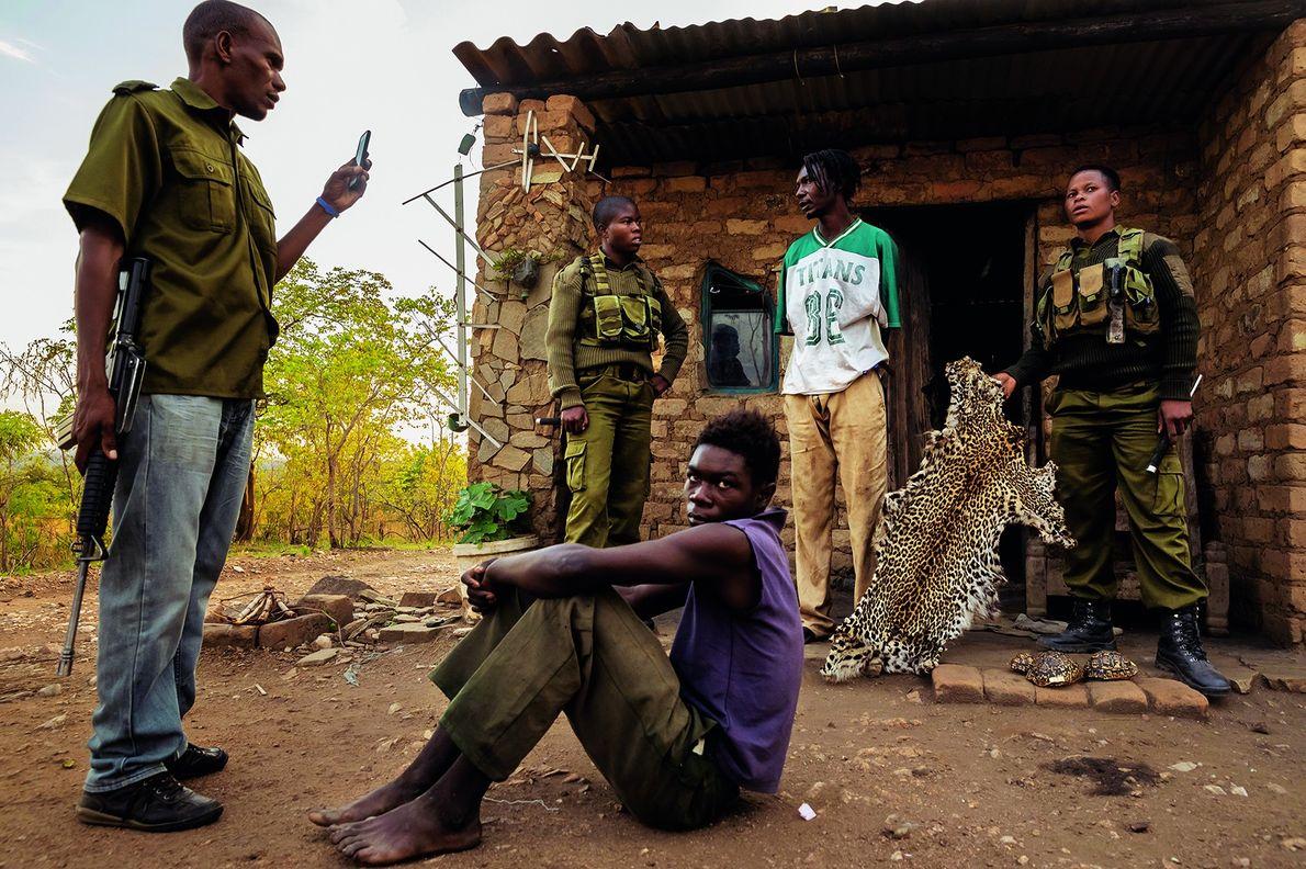 Zwei Wildhüterinnen befragen den mutmaßlichen Wilderer (stehend), nachdem sie bei einer Hausdurchsuchung ein Leopardenfell gefunden haben. …