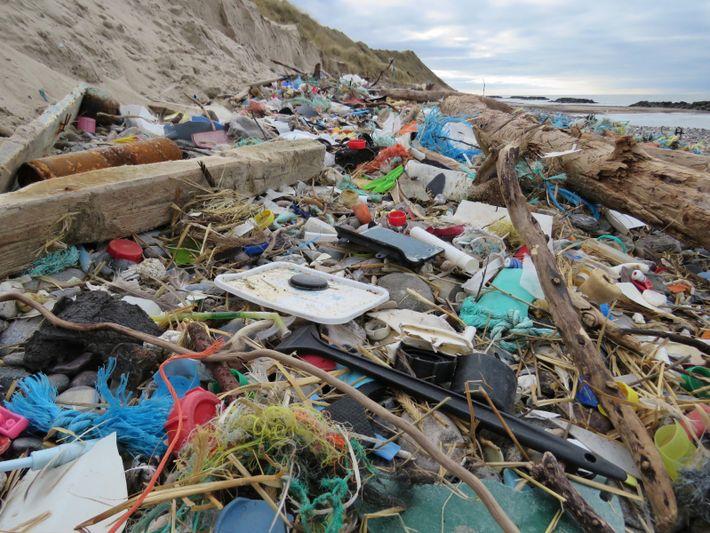 Plastikmüll an deutscher Küste