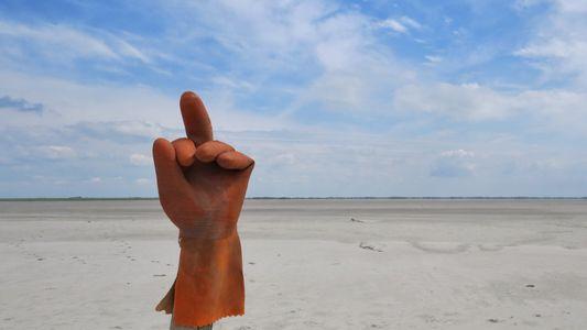 Zwischen App und Flut: Deutschlands Küstenbewohner kämpfen für saubere Strände