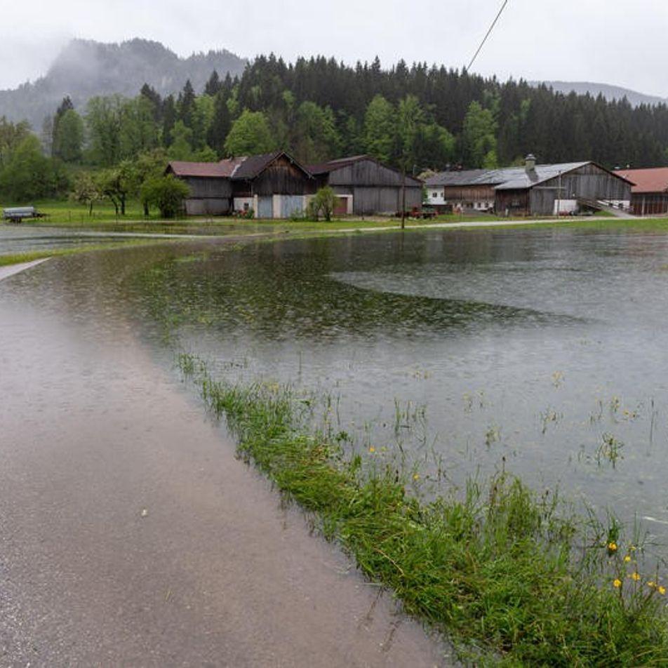 Galerie: Land unter in Bayern